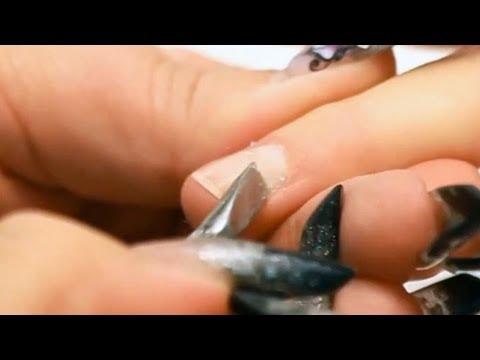 Le microorganisme végétal de longle comme lui couper
