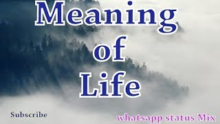 Meaning of Life | Quotes video | Whatsapp status MIX | 30 seconds | Maturity Kids