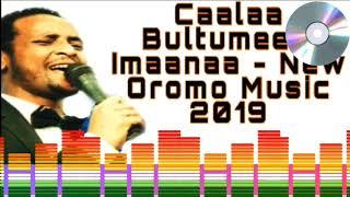 oromo music 2019 - Caalaa Bultumee biifole walaloo lyrics