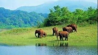Природа Индии. Большое путешествие. Священная река. Ганг. Документальный фильм National Ge