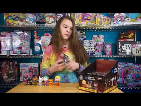Funko DC Superheros and Pets Mystery Minis