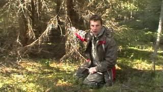 Смотреть онлайн Заготовка дров в лесу