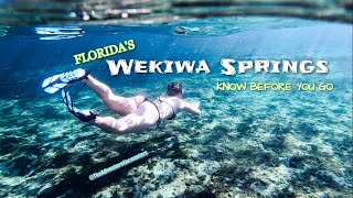 WEKIWA SPRINGS | Florida Natural Springs| What To Expect | Orlando Florida