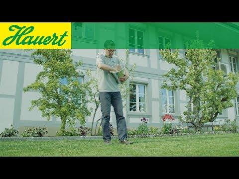 Rasen richtig düngen ohne Düngerstreuer. So wird's gemacht!