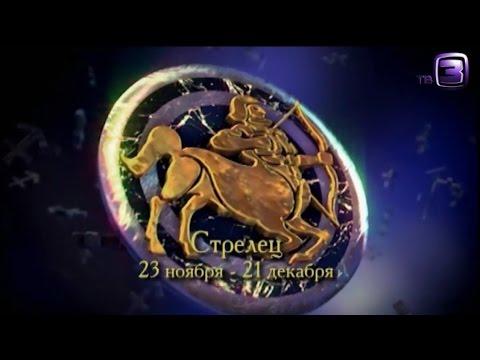 Гороскоп для дракона на 2017 год петуха