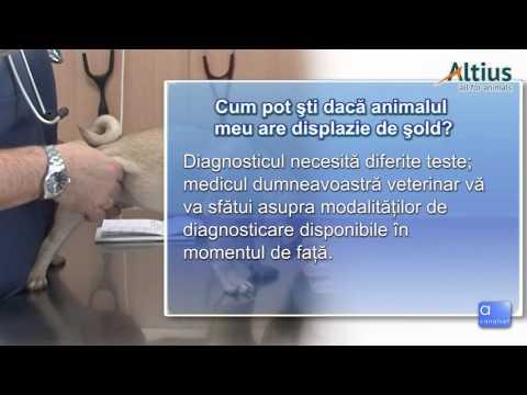 Umflarea durerii în articulația șoldului