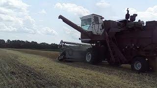 НИВА СК 5. Жнива озимої пшениці 2018
