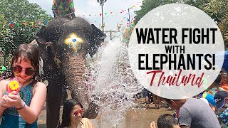 Waterfight with Elephants: Songkran Festival THAILAND