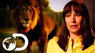 Mother Saves Her Son From Vicious Lion Attack | I'm Alive