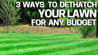 Improve your Lawn with Dethatching - 3 Ways How to do it for Any Budget