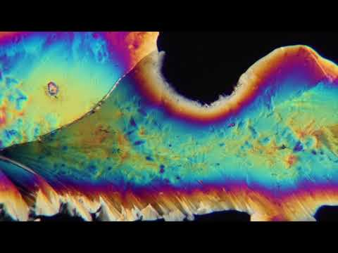 Capturing Crystal Growth with Polarized Light