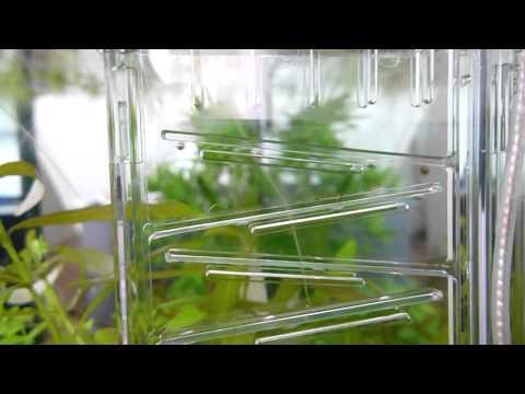 Dennerle CO2 Flipper HD