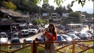 preview picture of video 'TODO SE APRENDE'