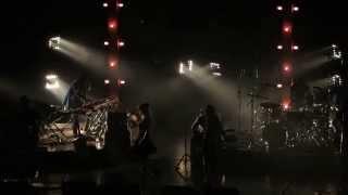 Angus & Julia Stone - Crash & Burn Live