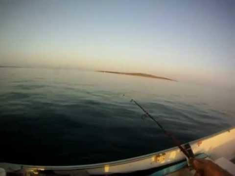 Passione da pesca