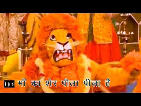 भवन रंगीला मां का शेर पीला पीला है