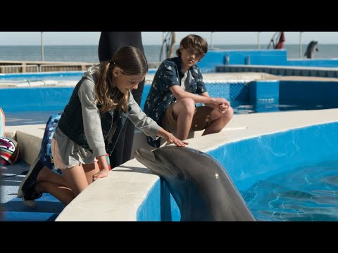 Bernie The Dolphin (2019) Official Trailer (HD)