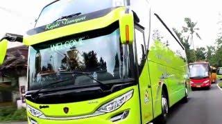 "Review Rejeki Transport Jogjakarta "" You Can Dancing In The Bus"" SCANIA K310 SHD Adi Putro"