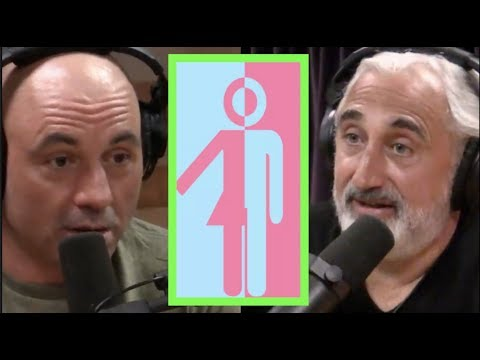 Joe Rogan a Gad Saad na téma gender