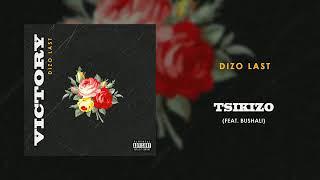 Dizo Last   Tsikizo ft  Bushali Audio   YouTube