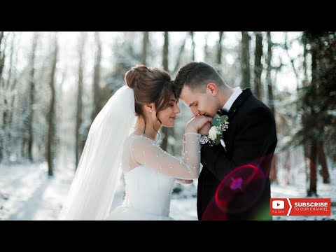 ALEX Entertainment, відео 11