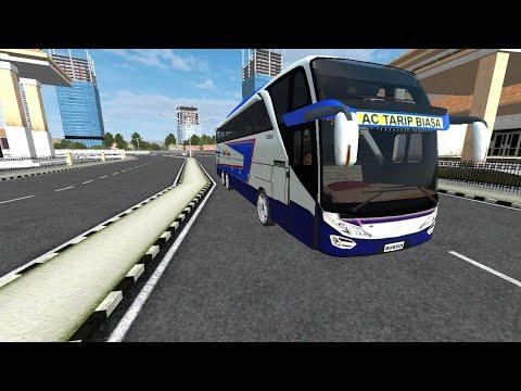 Tayo Indonesia,bus simulator