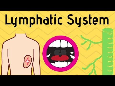 Krónikus prosztatitis propolis kezelése