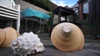 Autour des conques : tailler ses conques