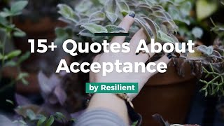 15+ Quotes About Acceptance and Acceptance Quotes