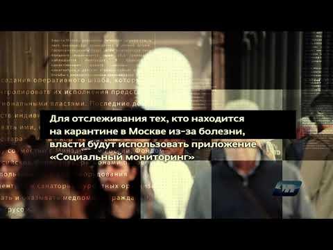 Хроника COVID 19 / 01.04.2020