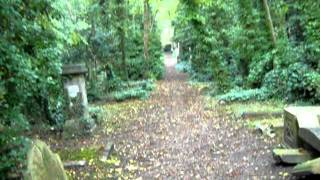 preview picture of video 'Highgate cemetery east walk. London. 27 September 2011.'