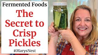 How To Make CRISP Lacto Fermented Pickles - A Probiotic Rich Food