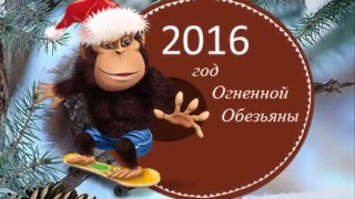 Зима холода_2015-2016_З Новим роком