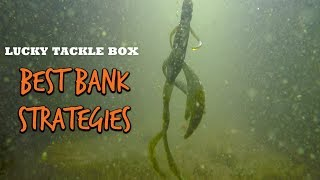 BEST Bank Fishing Strategies For Bass