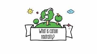 Explaining Carbon Neutrality | Sustainability