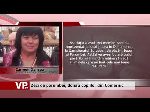 Zeci de porumbei, donați copiilor din Comarnic