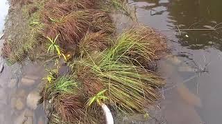 Амурская область места для рыбалки в