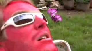 Ford Focus Sync: The Sun Bathe