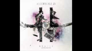 Assemblage 23 - The Noise Inside My Head.
