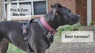 Best Dog Harness? Babyltrl No Pull Dog Harness Review