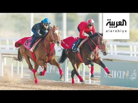 العرب اليوم - شاهد: السعودية الأولى عالميا في إنتاج الخيول العربية الأصيلة