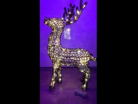 LED Illuminated Reindeer Video