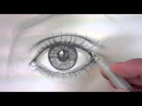 Die Kreise unter den Augen der Niere die Leber