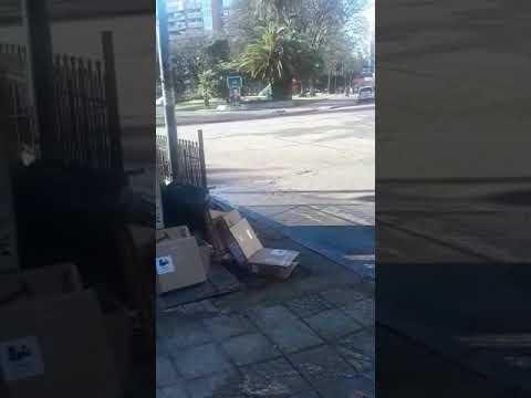 Desborde cloacal y foco infeccioso en 13 entre 43 y Plaza Paso