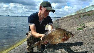 Где клюет отчеты с рыбалки липецк