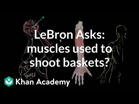 A thumbnail for: LeBron asks