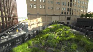 Filming the High Line: Day One