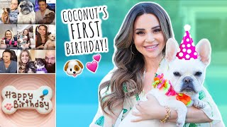 Throwing My Dog an EPIC Birthday Party! thumbnail