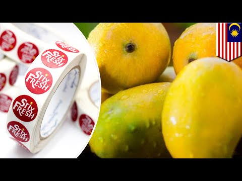 Cool new tech: Stickers that keep fruit fresh - TomoNews