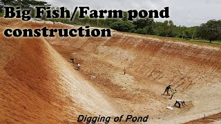 Fish Farming Using Rainwater | Farm & Fish Pond Construction | Rainwater Harvesting System | Pool